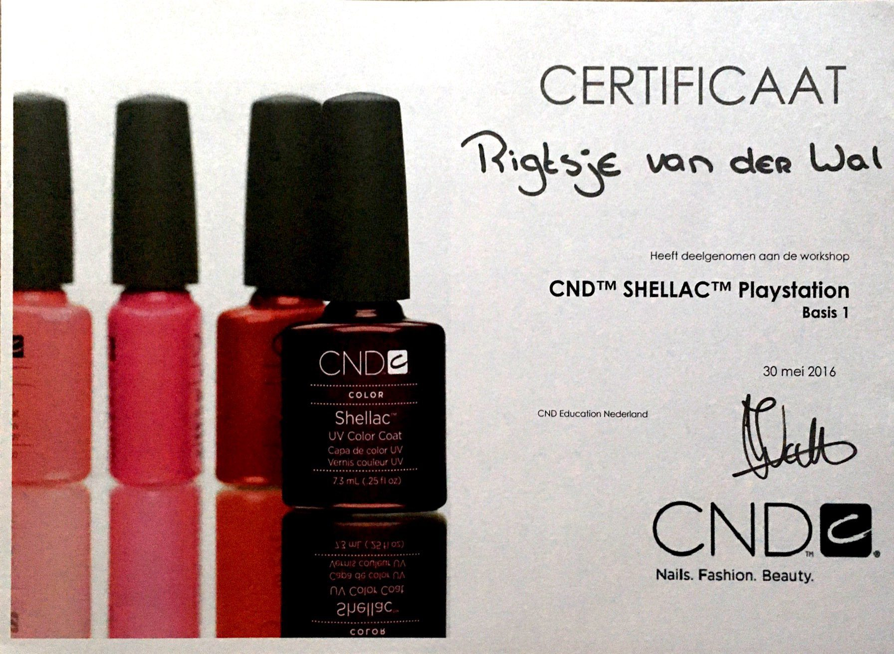 CND Shellac ''Playstation''